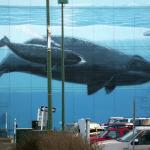 Wyland Mural
