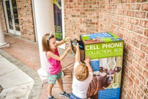 Virginia Zoo Eco-Cell box
